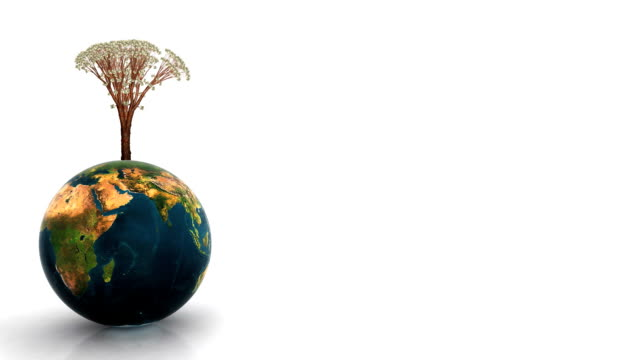 Animated glossy Earth and dollar tree growing
