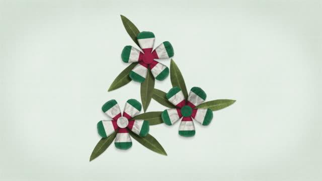 animated italian flag - looping flowers formation - ferragosto video stock e b–roll