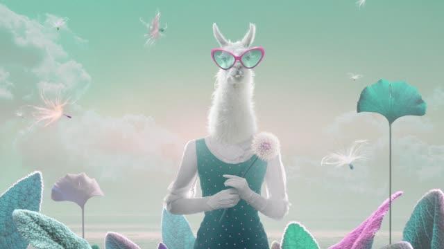vídeos de stock e filmes b-roll de animated lama - surrealismo