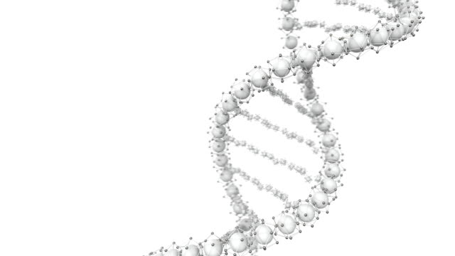 Animated looped DNA chain model. 3D rendering