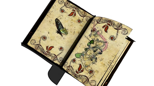 animated opening blank book with decorative painting flowers video