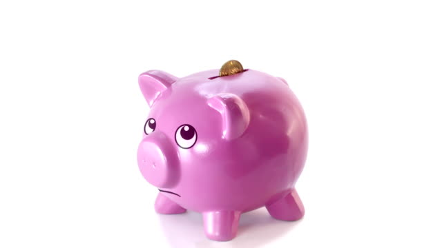 Animated piggy bank video