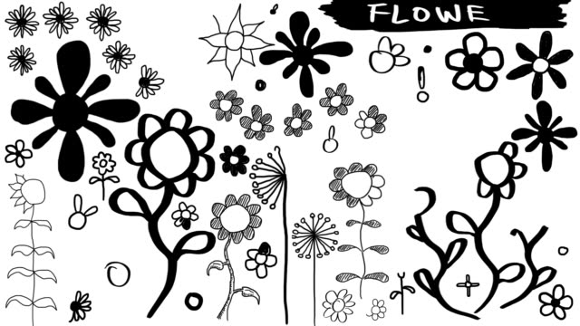 stockvideo's en b-roll-footage met animated sketches - hand drawn flowers (full hd) - floral line