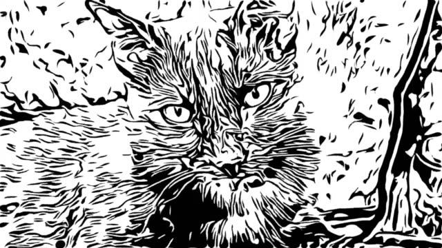 animation, tecknad svart katt - animal doodle bildbanksvideor och videomaterial från bakom kulisserna