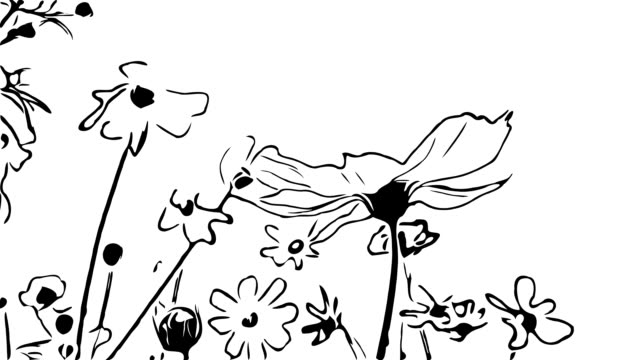 animation cartoon , cosmos flower on tree sway with the wind