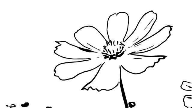 stockvideo's en b-roll-footage met animatiebeeldverhaal , kosmosbloem op boomslingeren met de wind - floral line