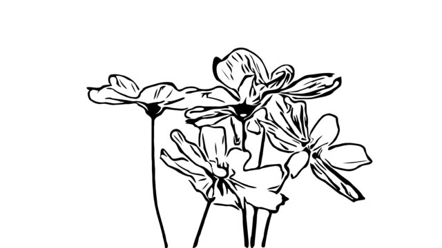 animation cartoon , cosmos flower on tree sway with the wind - vídeo