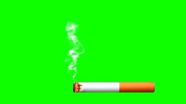 animazione sigaretta ardente con fumo da pieno fino alla fine su schermo verde e nero - sigaretta video stock e b–roll