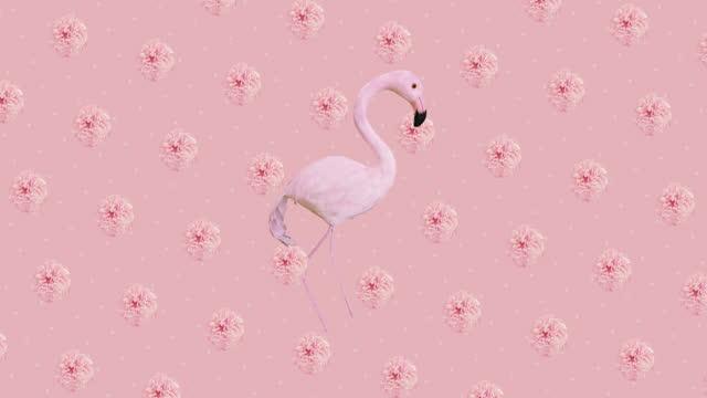 Animation design art. Flowers and flamingo background