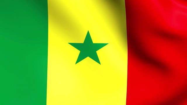 3d bandiera del senegal in africa - senegal video stock e b–roll