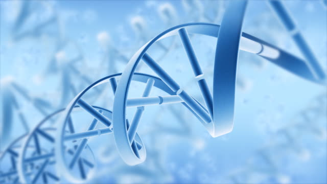 DNA. 3D Animation. Full HD video