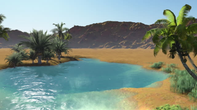 3D animation - Oasis in the desert, dark blue clear water surrounded by palm trees and sand dunes on a very hot day 3D animation - Oasis in the desert, dark blue clear water surrounded by palm trees and sand dunes on a very hot day desert oasis stock videos & royalty-free footage