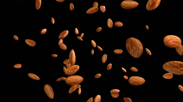 3d animation of a almond flow with alpha layer - noci video stock e b–roll