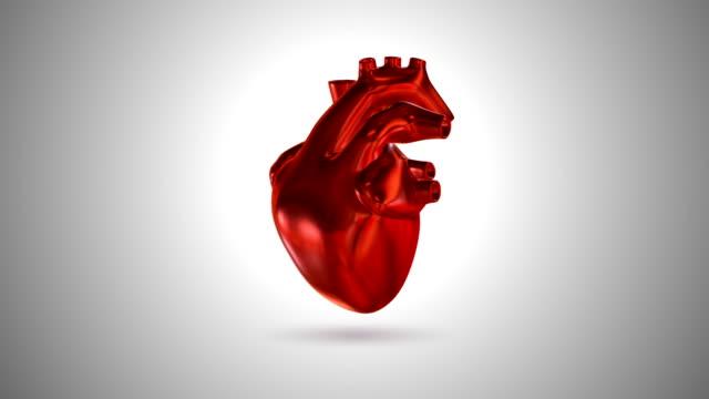 vídeos de stock e filmes b-roll de 3d animation of a beating human heart (loop 4k + chroma key) - imagem pulsante