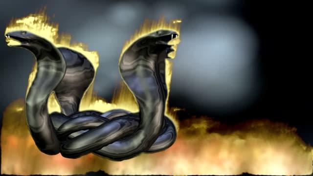 Animation d'un cercle de Cobra - Vidéo