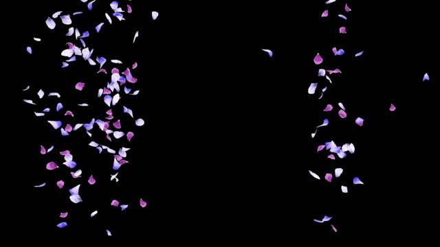 vídeos y material grabado en eventos de stock de animación 3d de un flujo de pétalos de flores con capa alfa - pétalo