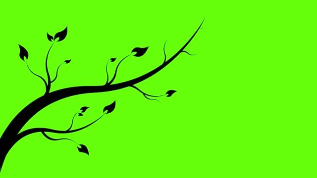 animation of branch vegetate. - fronda video stock e b–roll