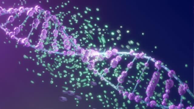 vídeos y material grabado en eventos de stock de animación del adn sobre fondo azul. - cromosoma
