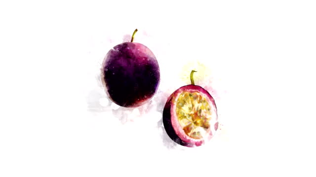 vidéos et rushes de animation de dessin fruits de la passion et de ses parties - fruit de la passion