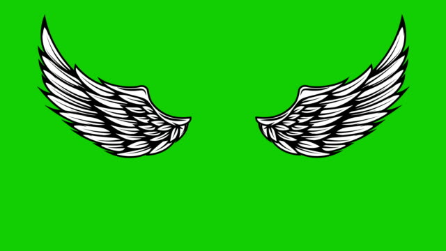 Animation of flying wings on green background. Angel wings animation. video