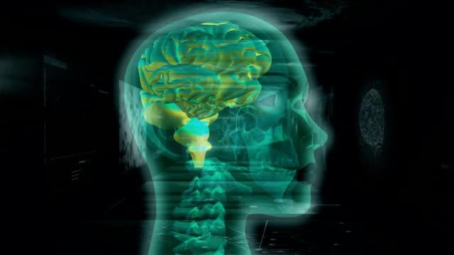 vídeos de stock e filmes b-roll de animation of mri scan of her brain - cérebro humano
