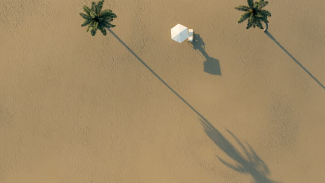 animation of palm beach with single chair and sunshade in top view