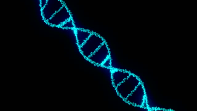 Animation of seamlessly looping DNA strand video