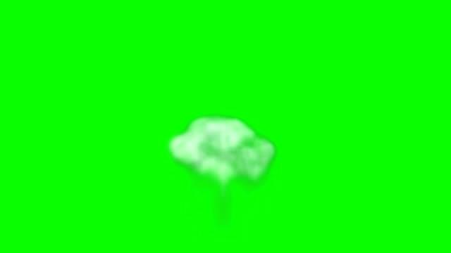 animasyon duman yeşil kutusunun - sonsuz döngü - smoke stok videoları ve detay görüntü çekimi
