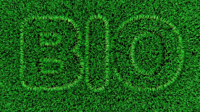 animation 3D du texte BIO sur l'herbe verte fraîche. - Vidéo