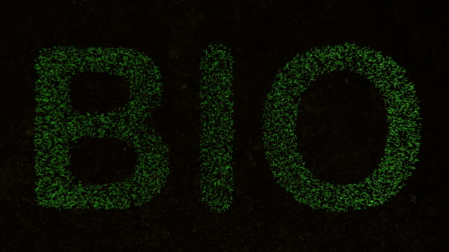 3D-Animation des BIO-Textes auf dem auf frischem, grünen Gras. – Video