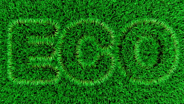 3d animation of the eco text on the on fresh green grass. - earth day stock videos & royalty-free footage