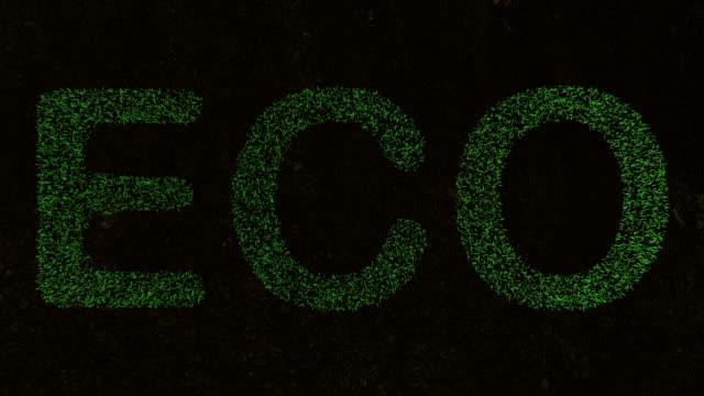 3D-Animation des ECO-Textes auf dem auf frischem, grünen Gras. – Video