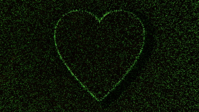 3d animation of the heart symbol on fresh green grass. - earth day stock videos & royalty-free footage