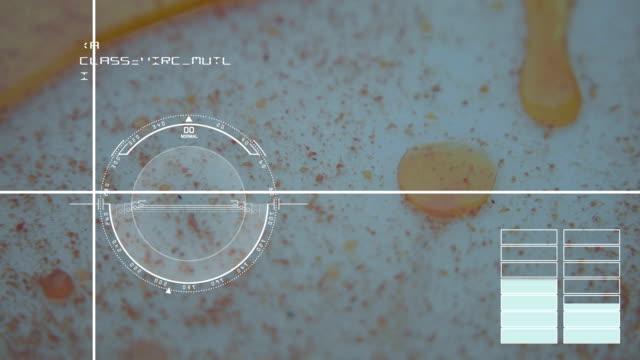 animation -  Virus, bacteria, microbe. HUD Futuristic medical background video