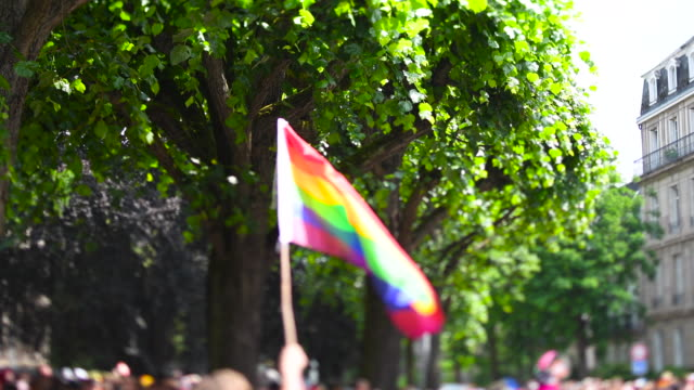 Annual gay pride parade with thousands of people Europe tilt-shift Man hand waving gay rainbow flag over thousands of people crowd tilt-shift lens used annual Festigays pride gays and lesbians parade marching French streets dancing fun party atmosphere pride stock videos & royalty-free footage