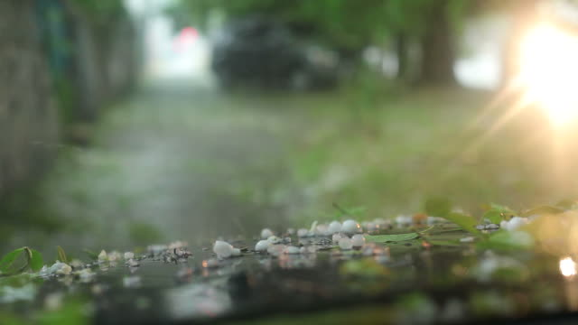 hail anomali - grandine video stock e b–roll
