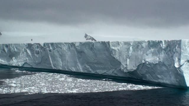Antarctica. Icebergs, glaciers, mountains.