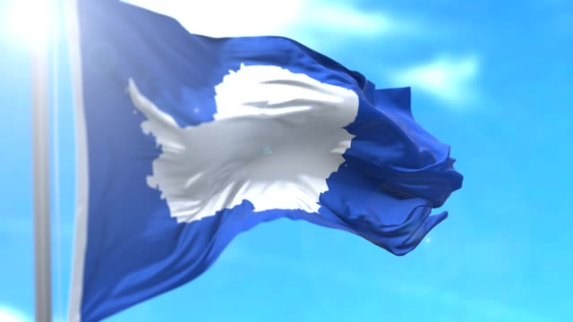Bandera de Antartica - vídeo