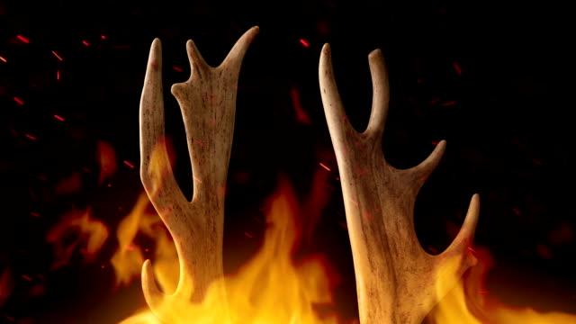 antlers rotating in fire - poroże filmów i materiałów b-roll