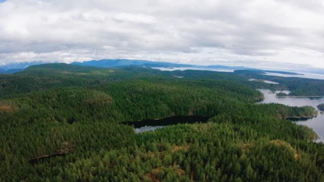 amboss see cortes island british columbia kanada discovery islands aerial helicopter view - britisch kolumbien stock-videos und b-roll-filmmaterial
