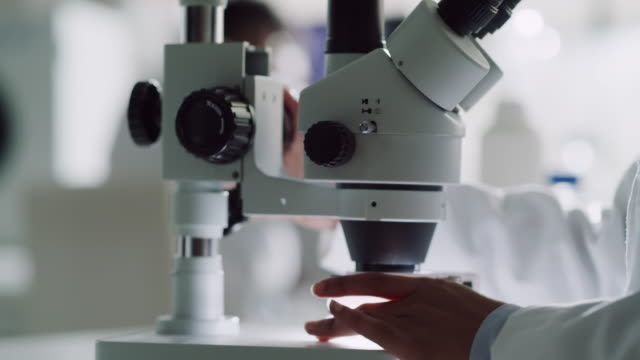 Anything is possible under the microscope 4k video footage of an attractive young female scientist working with a microscope in a laboratory with her colleague in the background biochemistry stock videos & royalty-free footage