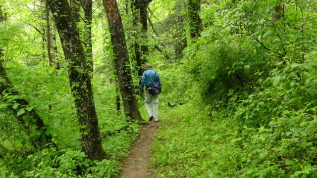Appalachian Trail hiker George Washington National Forest Virginia video