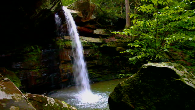 Appalachian Wilderness Waterfall video