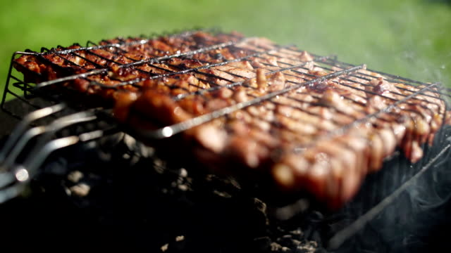 Appetizing roasted meat on the coals. Pork barbecue video