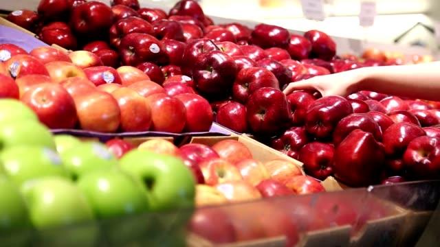 vídeos de stock e filmes b-roll de apple apanhar frutos - picking fruit