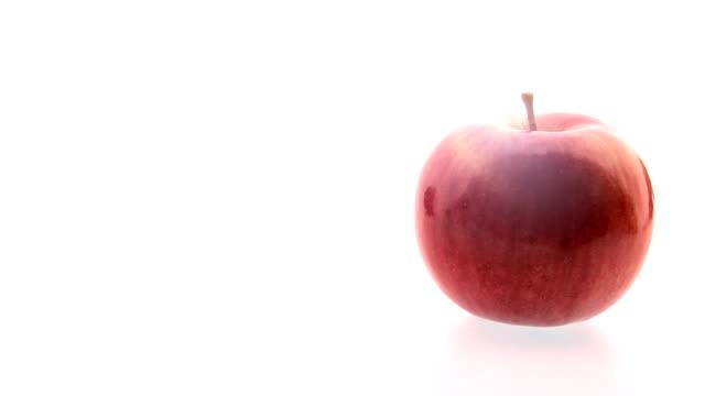 Apple revelation video