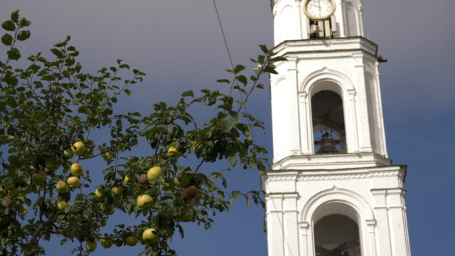 Apple tree in front of Raif monastery bell tower. Bell tower Church of Archangel Michael video