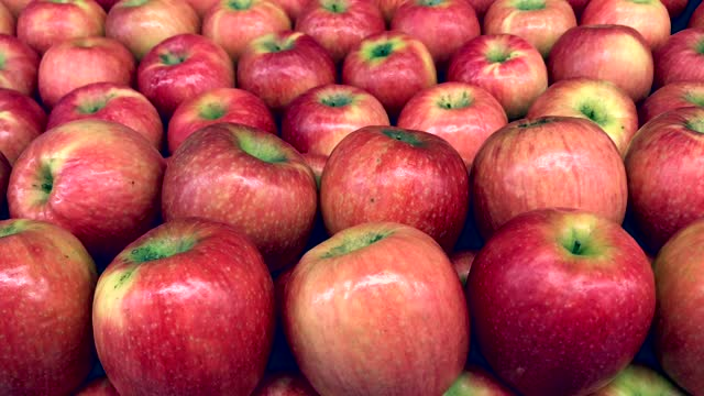 Apples are on the shelf for sale in supermarkets.