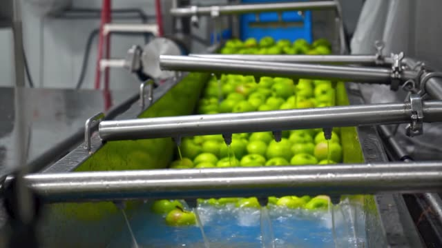 apples washing on conveyor belt, automation to squeeze apple juice. - agricultural machinery stock videos & royalty-free footage