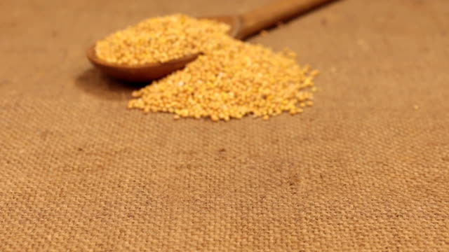 Approximation of a wooden spoon overflowing with millet grains, lying on burlap video